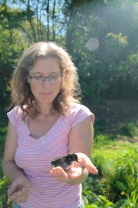 Heuer haben uns unsere Hennen mit vielen Küken aus versteckter Wildbrut überrascht!