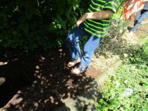 Beim Naturentdecker-Kindergeburtstag über´n Barfußpfad