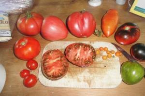 Tomatensamen nehmen